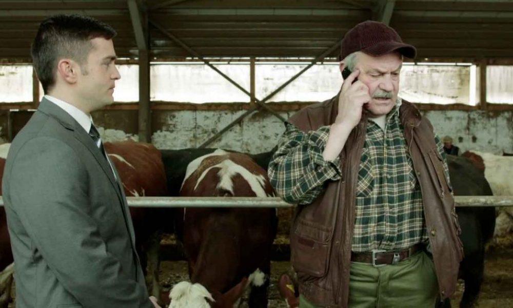 DSK / Dairy Farm